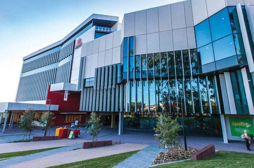 universidad de griffith australia